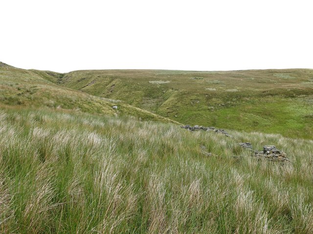 Ruined sheepfold by the cleugh of Killhope Sike
