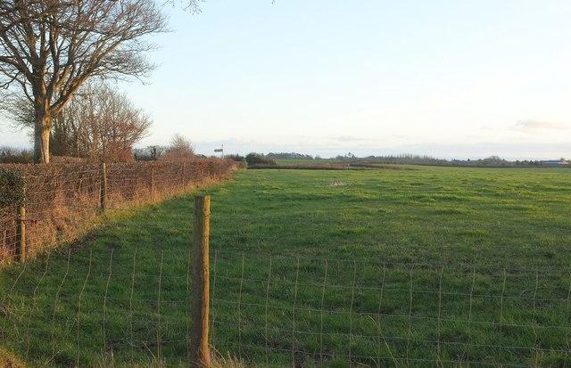 Field by Hayne Town Cross