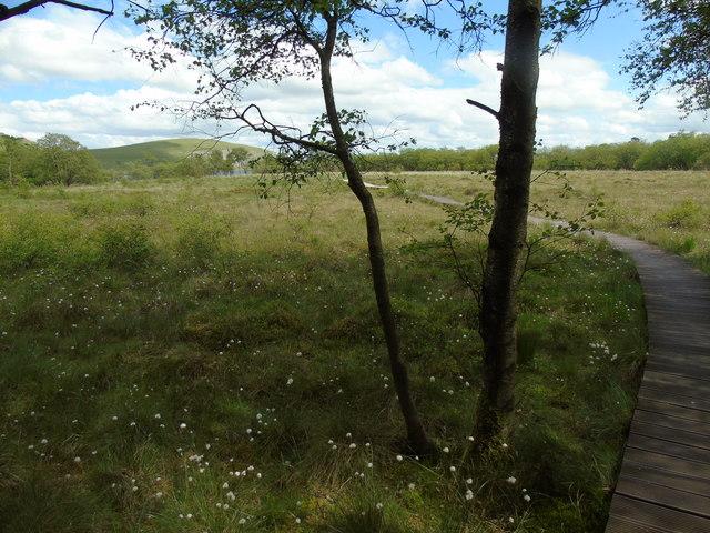 Tarn Moss to Malham Tarn