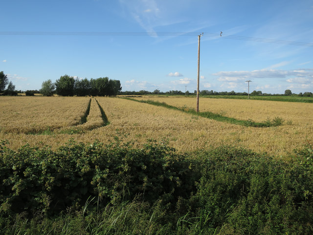 Fields by Bannold Road