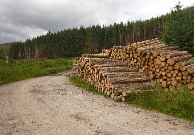 Timber stacks, by Gleann Sgathaich