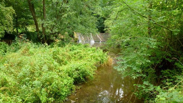Weir on the Leigh Brook