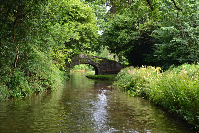 Monmouthshire and Brecon Canal near Bridge No. 95