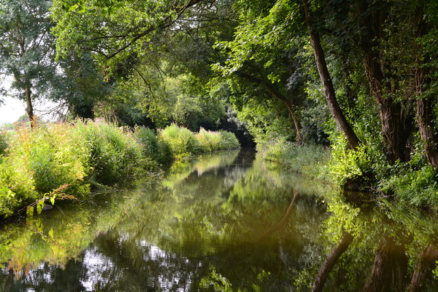 Summer morning light on the Monmouthshire and Brecon Canal