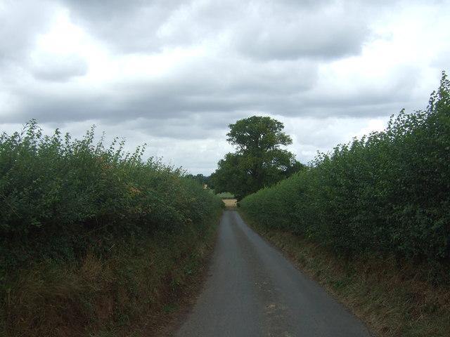 Lane near Webbhouse Farm