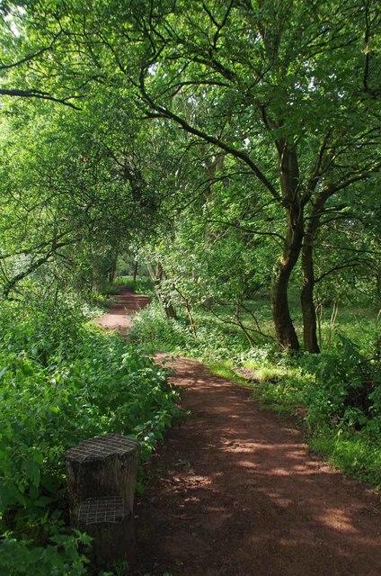 Mounting Step at Honey Lane Plain