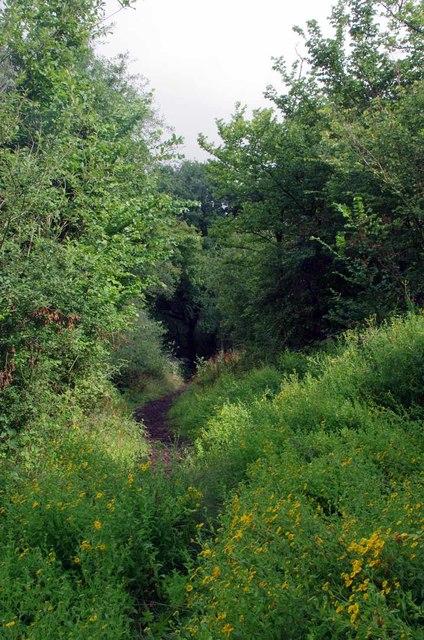 Permissive Path by Woodgreen Rd