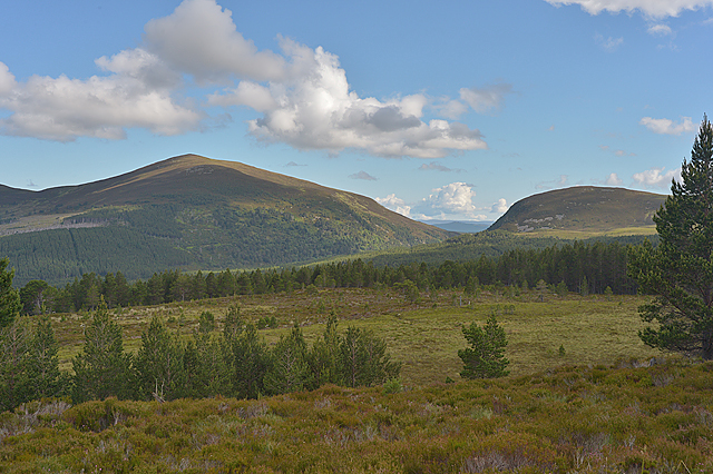 Looking towards Meall a' Bhuachaille and the Pass of Ryvoan