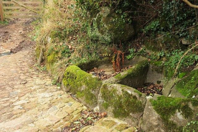 Granite basins, Foxworthy