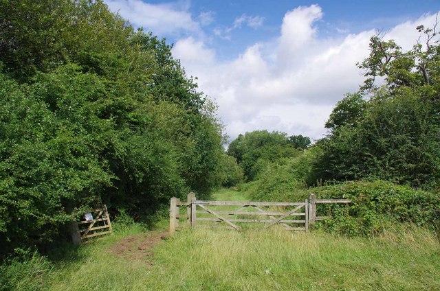 Gate and Path Past Cobbin Pond