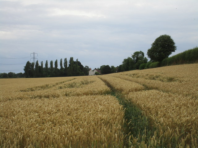 Wheatfield and Brickyard Farm