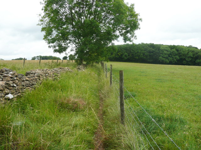 Footpath to The Frith, Slad
