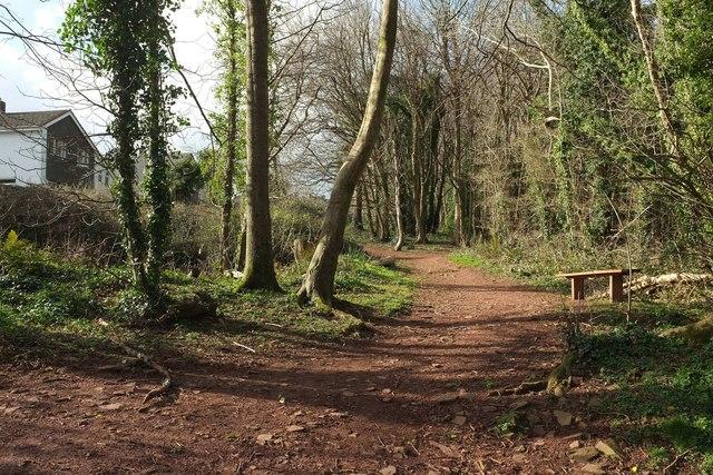 Path, Manscombe Plantation