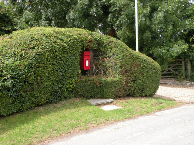 Post Box in a Hedge