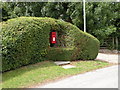 TL5160 : Post Box in a Hedge by Keith Edkins