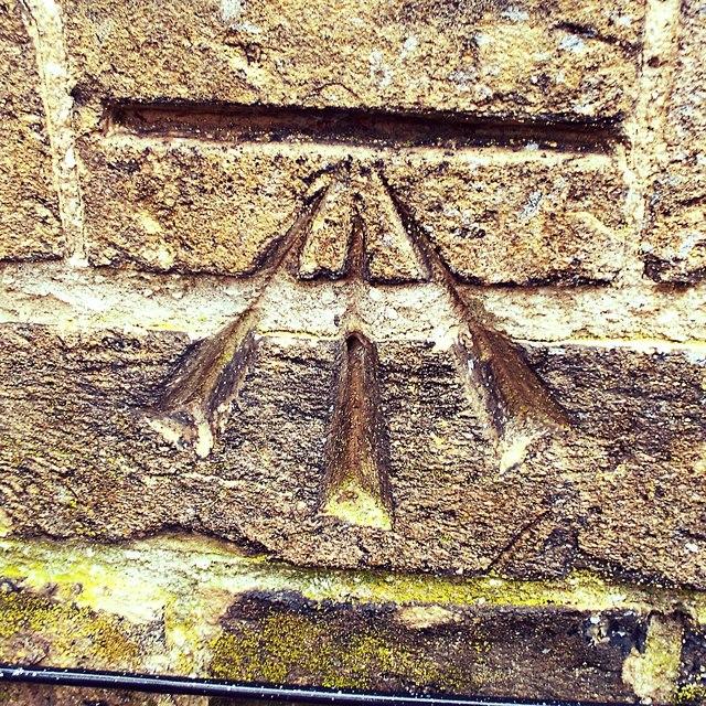 Cut Mark Stowmarket Abbots Hall