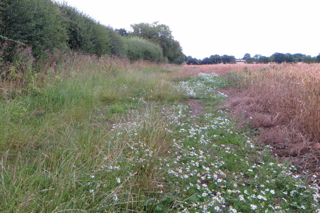 Bridleway to Astwell