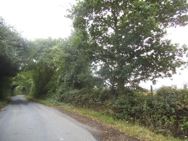 Pepsal End Lane near Flamstead
