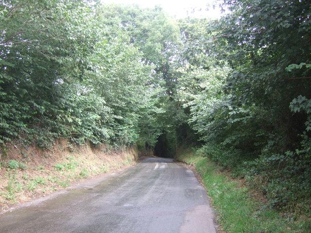 Old Burcot Lane