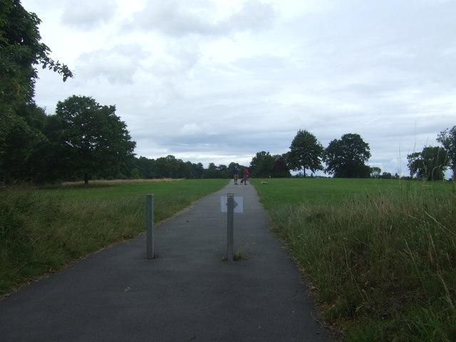 Path, Cofton Park