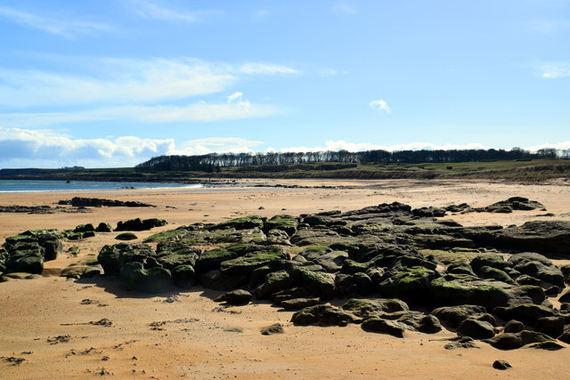 Kingsbarns beach, looking towards Cambo