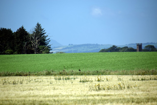 West of Balbuthie, Kilconquhar