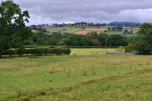Fields near Llanfrynach