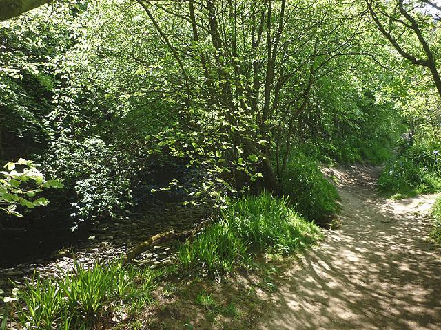 Footpath beside the Derwent