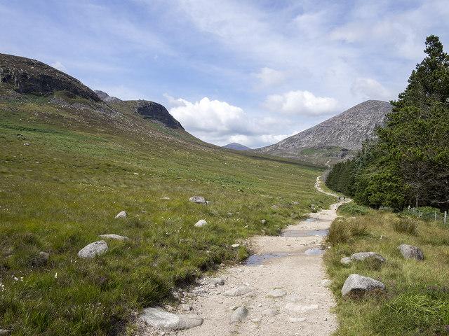 Path by Annalong Wood