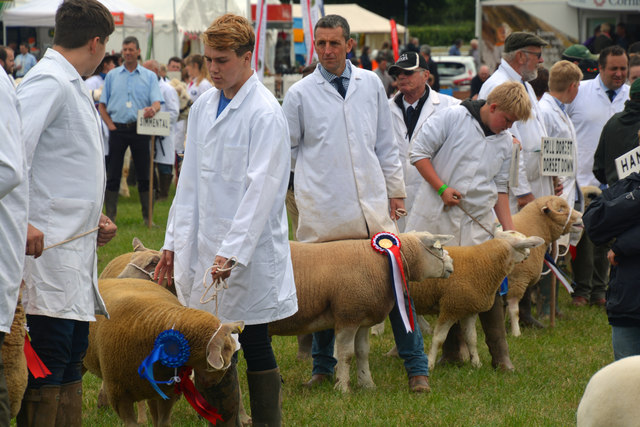 Tiverton : Mid Devon Show 2017