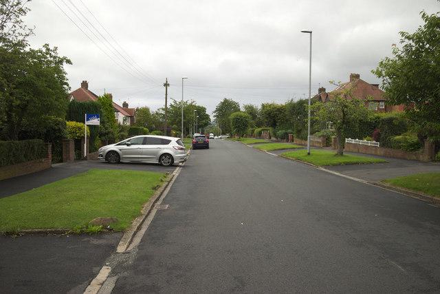 The Avenue, Alwoodley Park