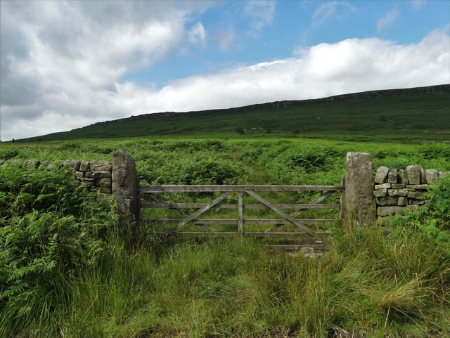 Gateway north of Sheepwash Bank