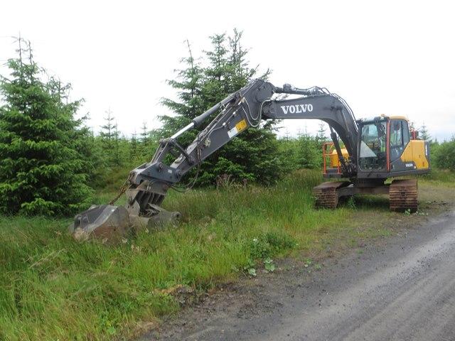 Excavator in Wark Forest
