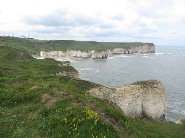 Clifftops at Flamborough Head