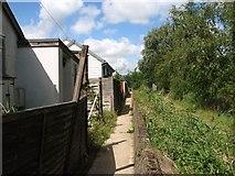 TM4599 : Footpath along the River Waveney by Evelyn Simak