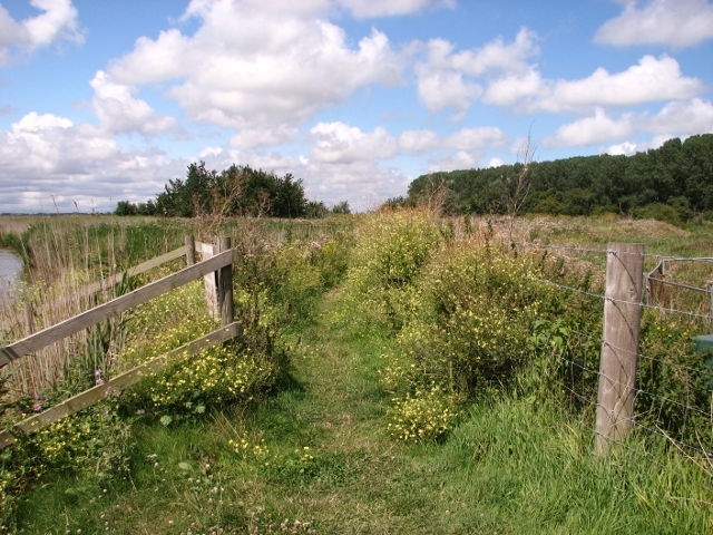Footpath to the Waveney Forest