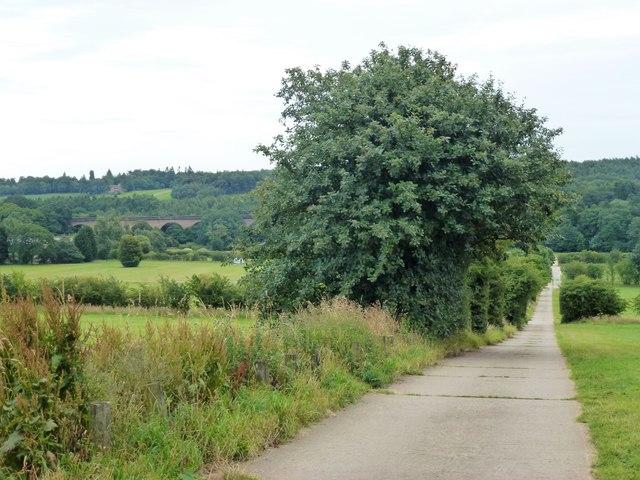 Concrete road through a former golf course near Harrogate