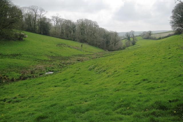 Stream valley descending past Collaford Wood, east of Blackawton