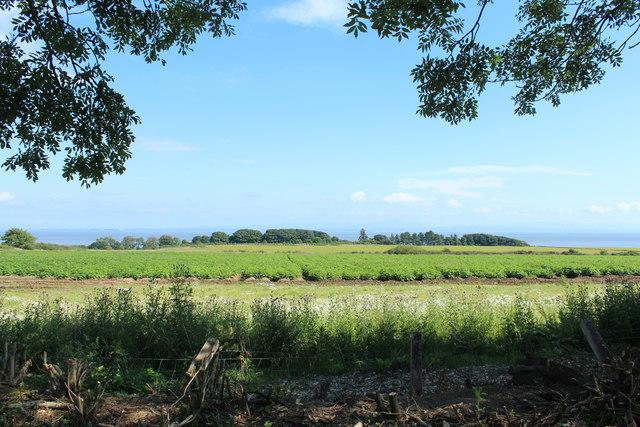 Farmland at Arbigland
