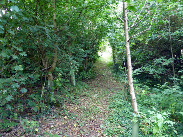 Path parallel with Staines Road