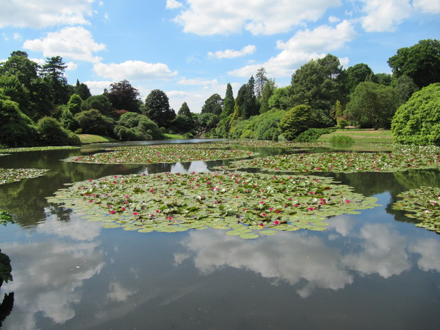 Middle Lake at Sheffield Park