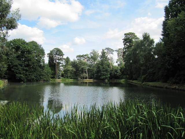 Fish or Storage Pond at Sheffield Park