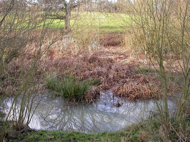 Oaklands Pond before restoration
