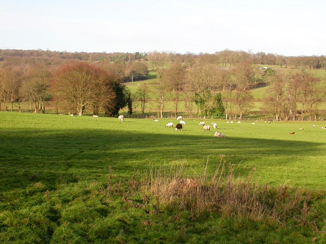 Winter view across the Brede valley from Oaklands Pond