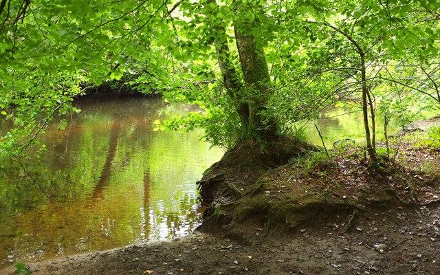 River Bovey above Parke