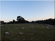 TM1645 : Rubbish at Christchurch Park music day 2017 by Hamish Griffin