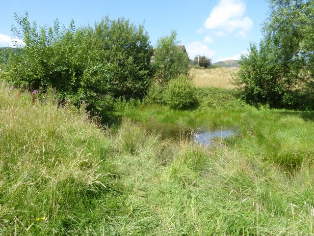 Pond on Malvern Common