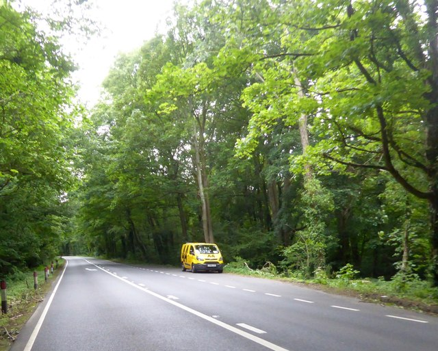 Lay-by by A39 in Loxley Wood