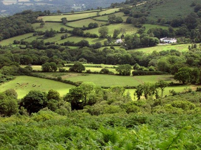 Fields towards Leighon