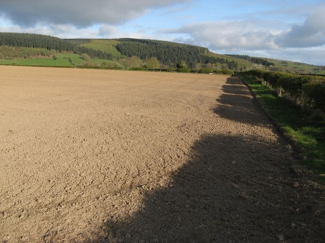 Arable with shadows
